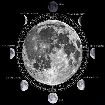 Phases - Moon