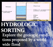 Noah's Flood – Hydrologic Sorting